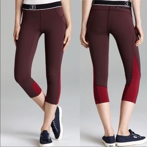 Theory 38 Cropped Maroon Leggings